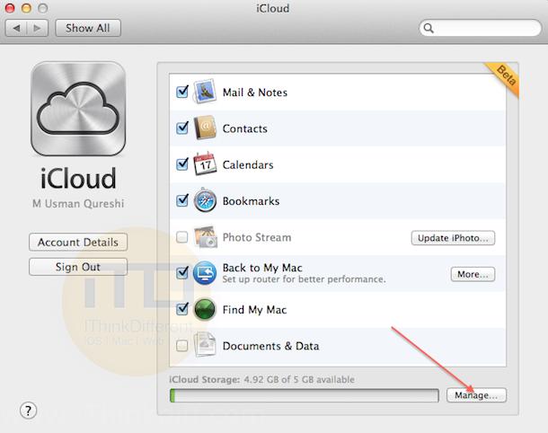 iCloud Lion 2iTD