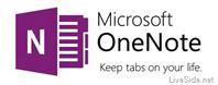 OneNote 2013 logo