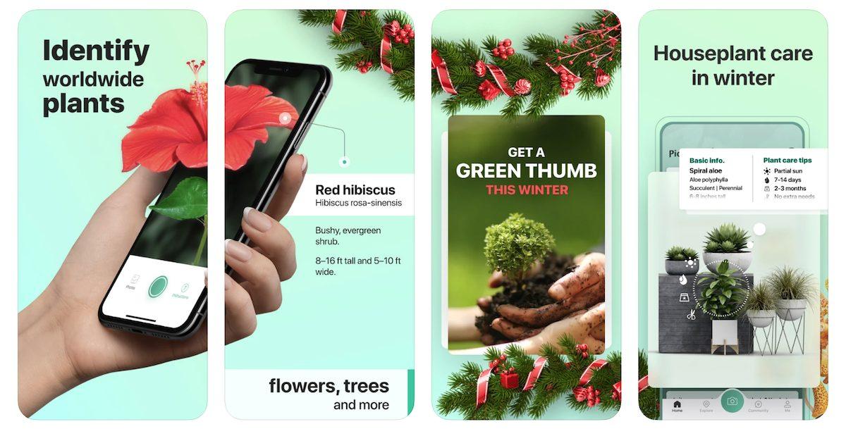 plant identifier app