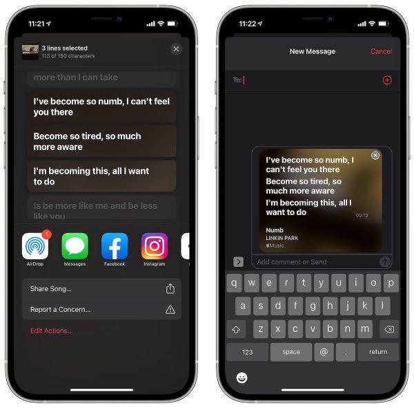 iOS 14.5 Music app lyrics lines share
