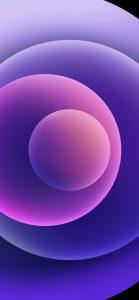 Purple iPhone 12 wallpapers Light