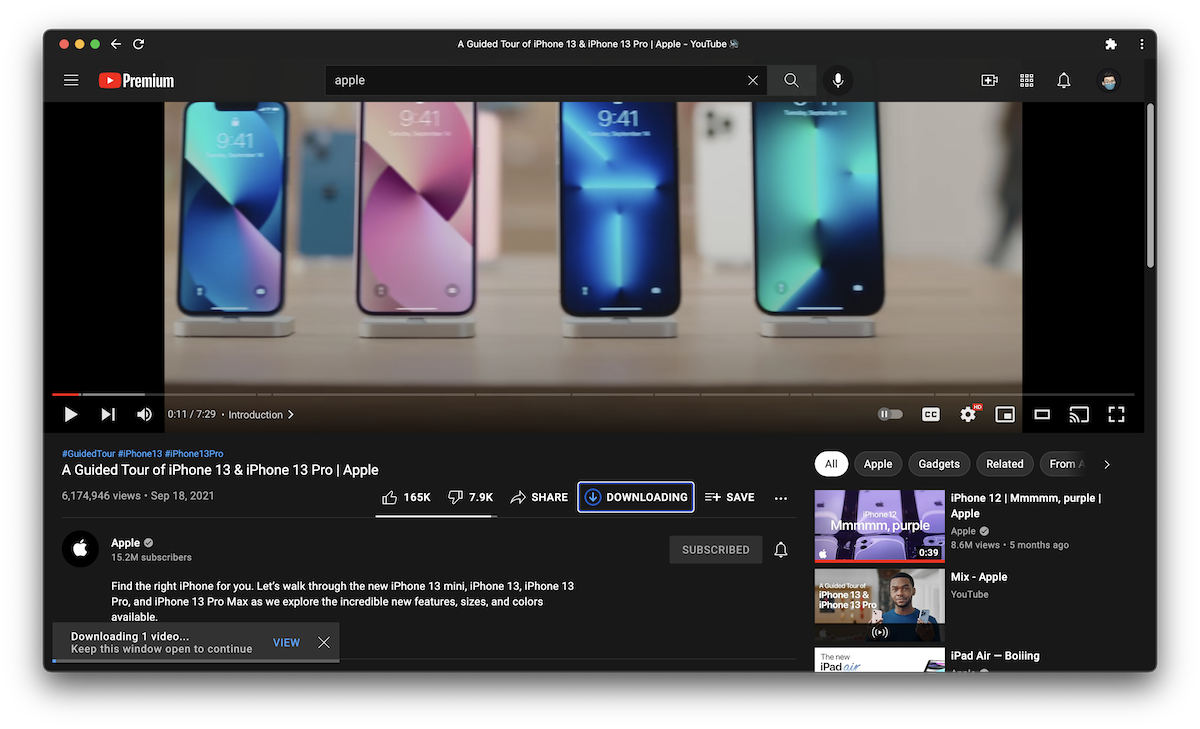 YouTube download videos in browser 2
