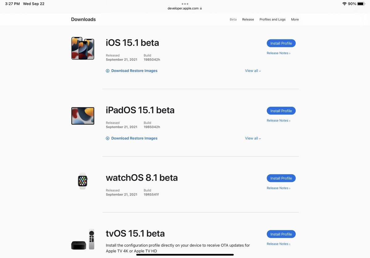 install iPadOS 15.1 beta 1