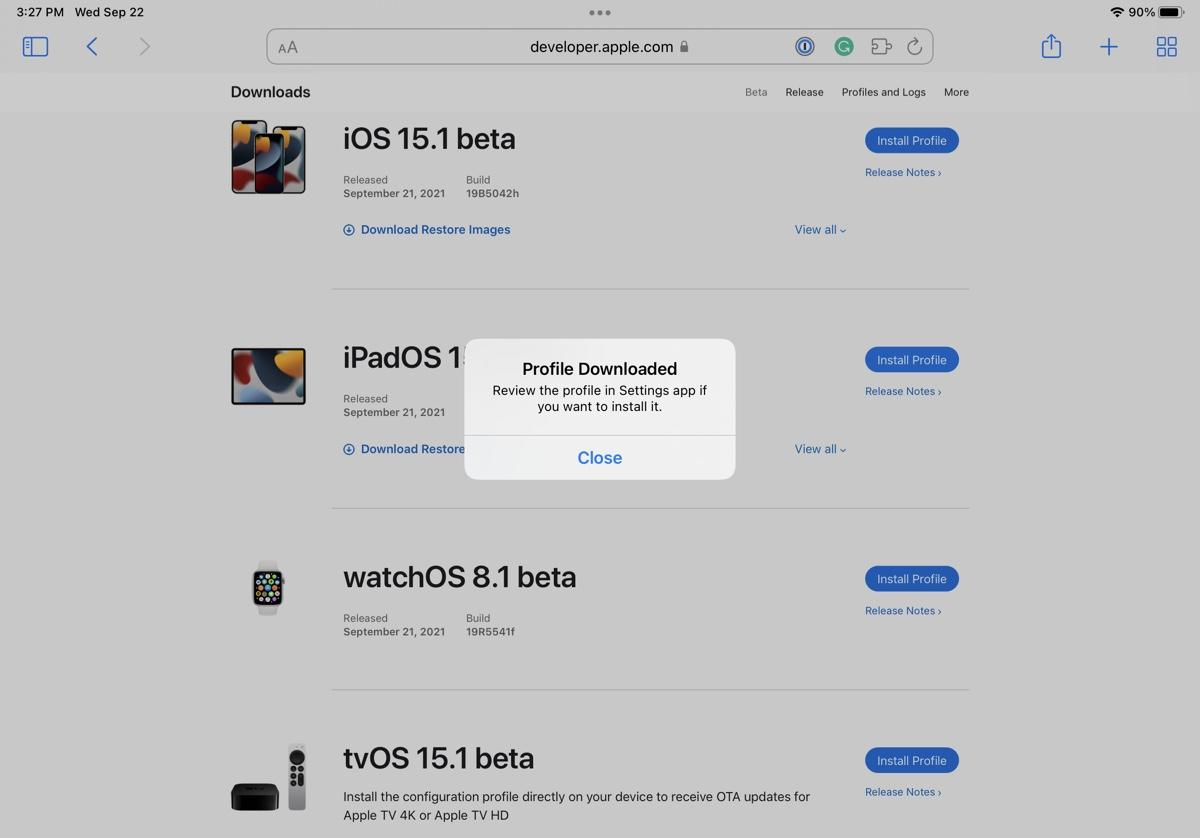 install iPadOS 15.1 beta 6