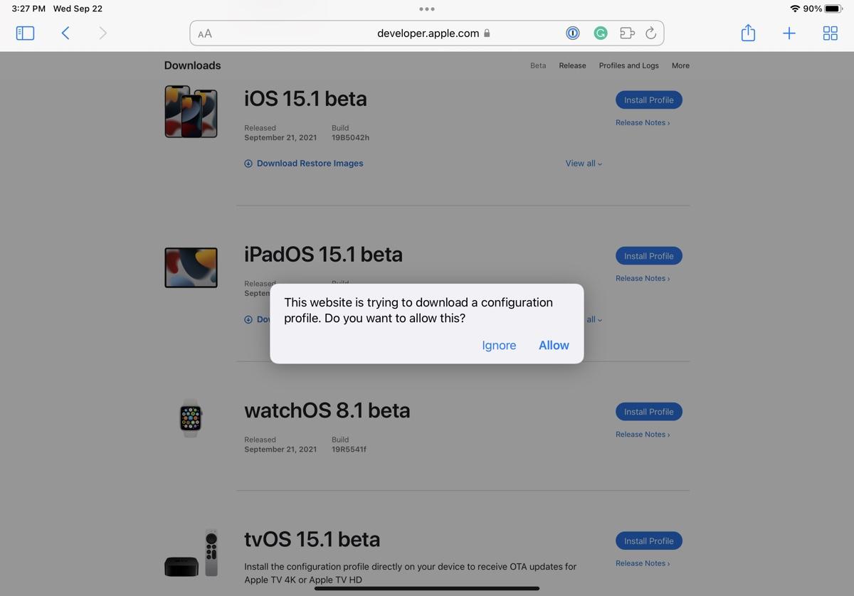 install iPadOS 15.1 beta 7