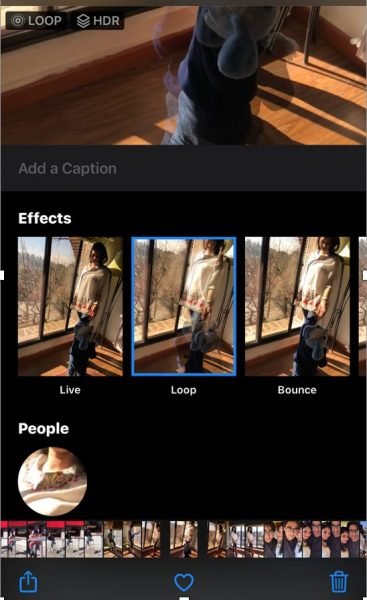 apply boomerang effect to live photo